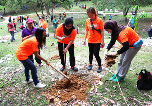 Tree Planting by CMS