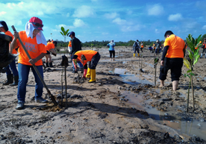 Planting trees to save the fragile Ecosystem