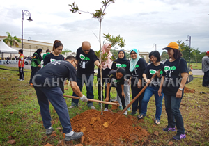 Pledge and Plant a Tree!